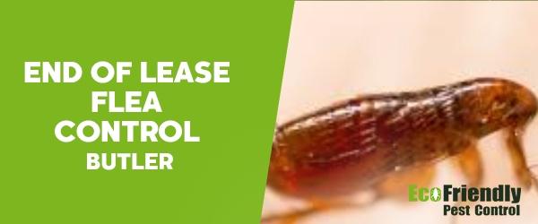 End of Lease Flea Control Butler