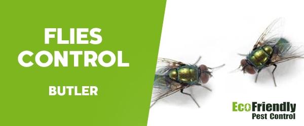 Flies Control Butler