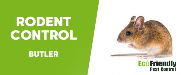 Rodent Treatment Butler