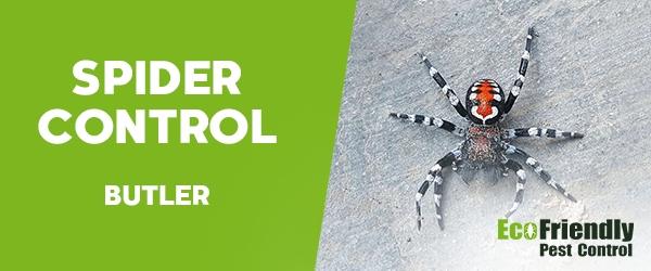 Spider Control Butler