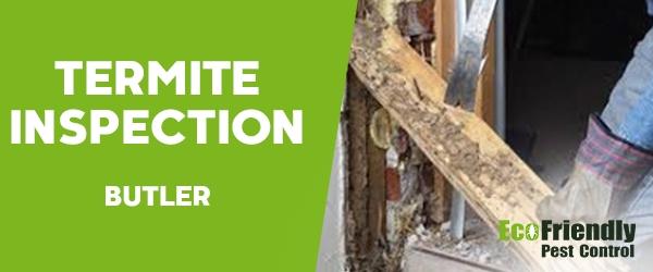 Termite Inspection Butler