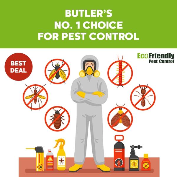 Pest Control Butler
