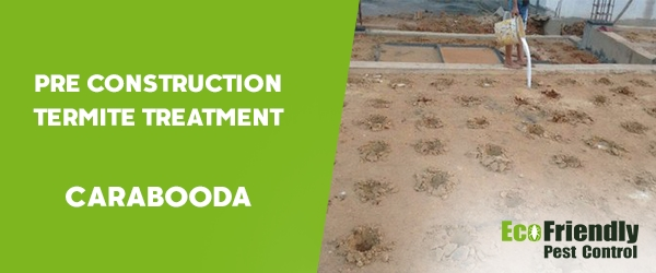 Pre Construction Termite Treatment Carabooda
