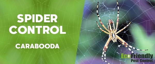 Spider Control Carabooda