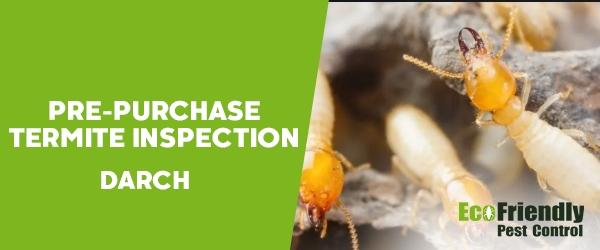 Pre-purchase Termite Inspection Darch
