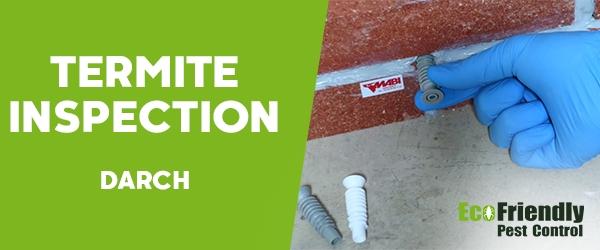 Termite Inspection Darch