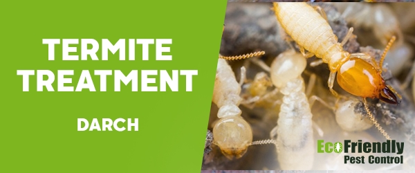 Termite Control Darch