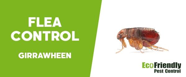 Fleas Control Girrawheen