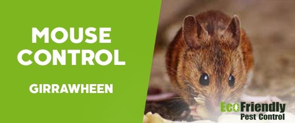 Mouse Control Girrawheen