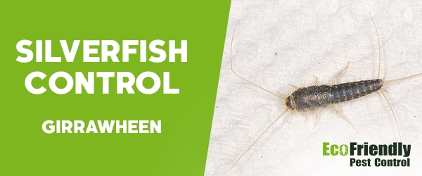 Silverfish Control Girrawheen