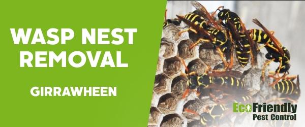 Wasp Nest Remvoal Girrawheen