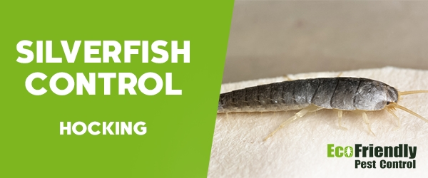 Silverfish Control Hocking