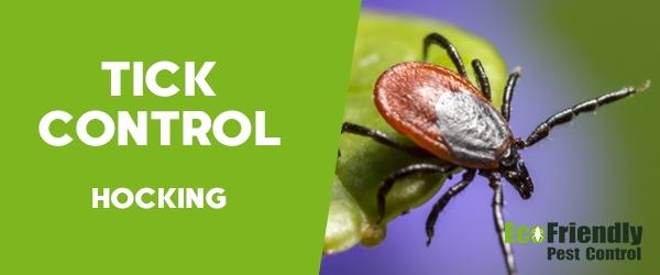 Ticks Control Hocking