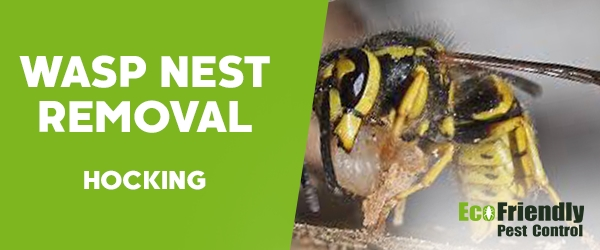 Wasp Nest Remvoal Hocking