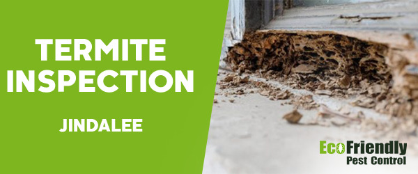Termite Inspection  Jindalee