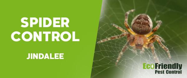 Spider Control  Jindalee