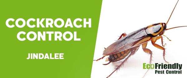 Cockroach Control  Jindalee