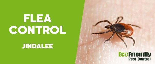 Fleas Control  Jindalee