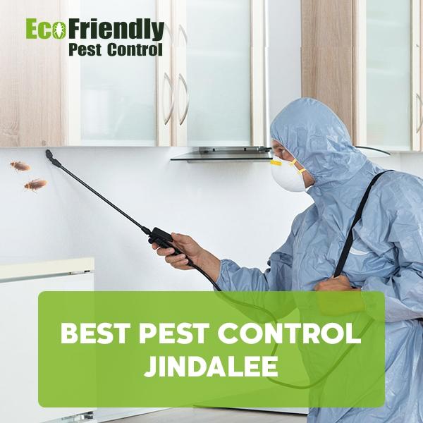 Best Pest Control  Jindalee