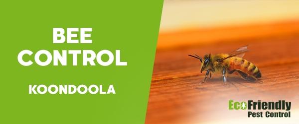 Bee Control Koondoola