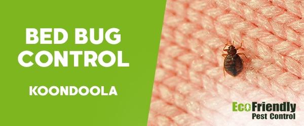 Bed Bug Control Koondoola