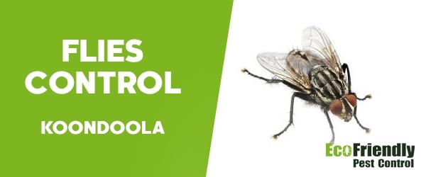 Flies Control Koondoola