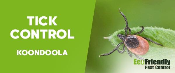 Ticks Control Koondoola