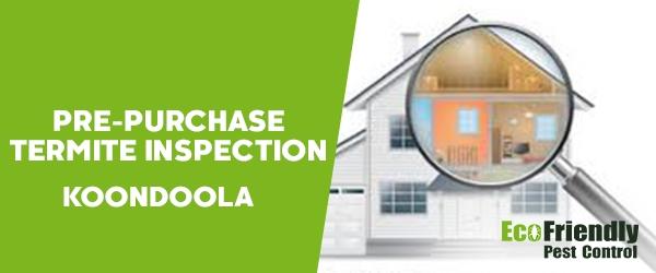 Pre-purchase Termite Inspection Koondoola