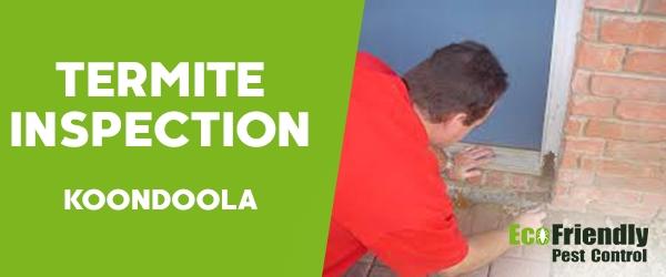 Termite Inspection Koondoola