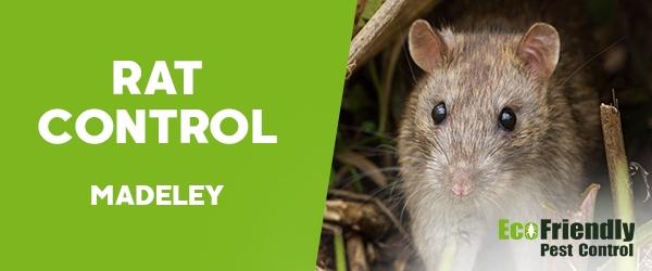 Rat Pest Control Madeley
