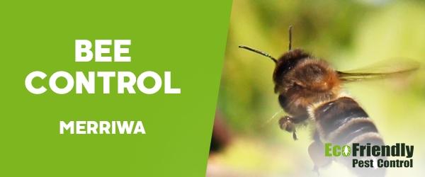 Bee Control Merriwa