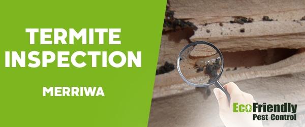 Termite Inspection Merriwa