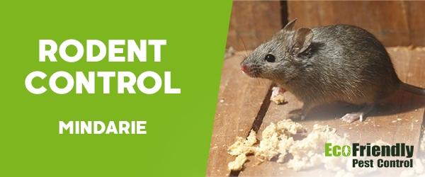 Rodent Treatment  Mindarie