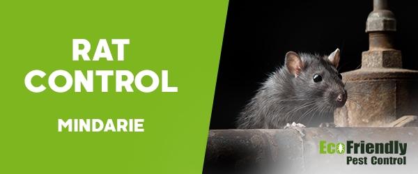 Rat Pest Control  Mindarie