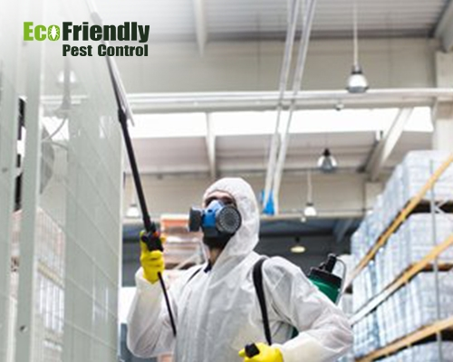 Pest Control Pearsall