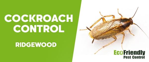 Cockroach Control Ridgewood