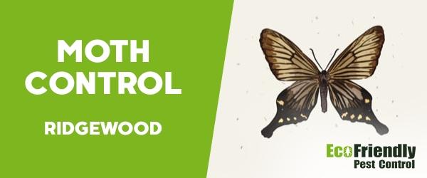 Moth Control Ridgewood