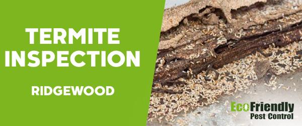 Termite Inspection Ridgewood