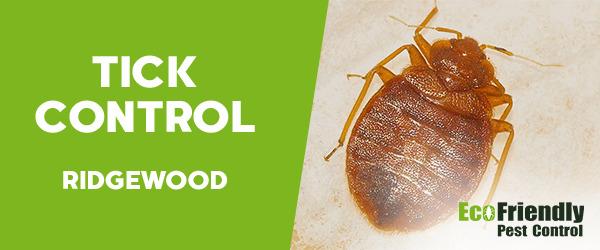 Ticks Control Ridgewood