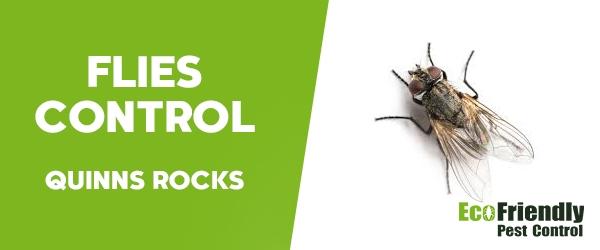Pest Control Quinns Rocks