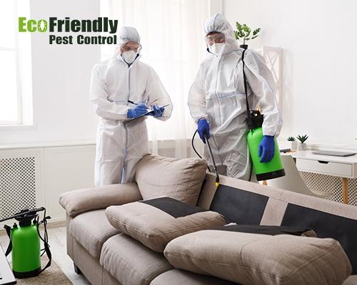 Pest Control Ridgewood