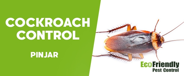 Cockroach Control  Pinjar