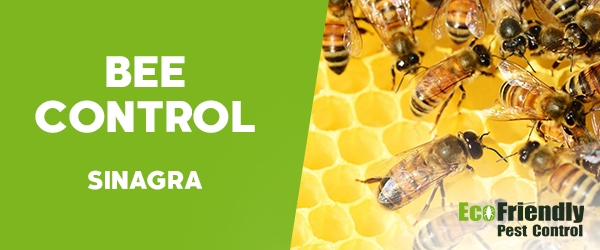 Bee Control Sinagra