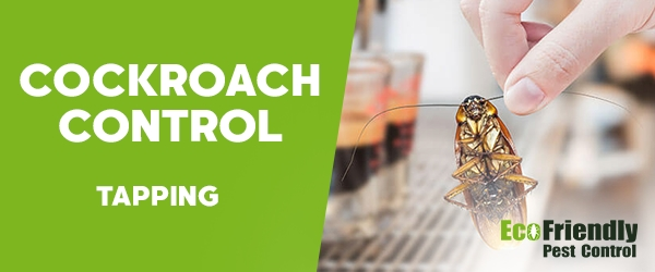 Cockroach Control Tapping