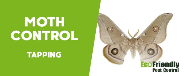 Moth Control Tapping