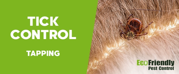 Ticks Control Tapping
