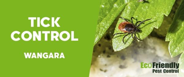 Ticks Control  Wangara