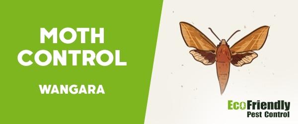 Moth Control  Wangara