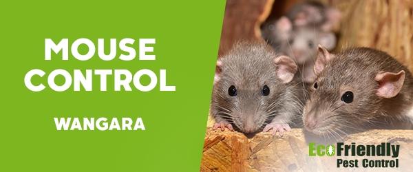 Mouse Control  Wangara