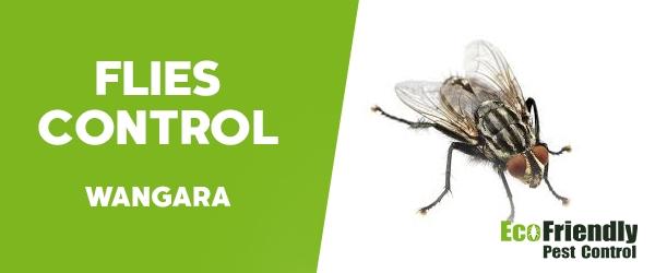 Flies Control  Wangara